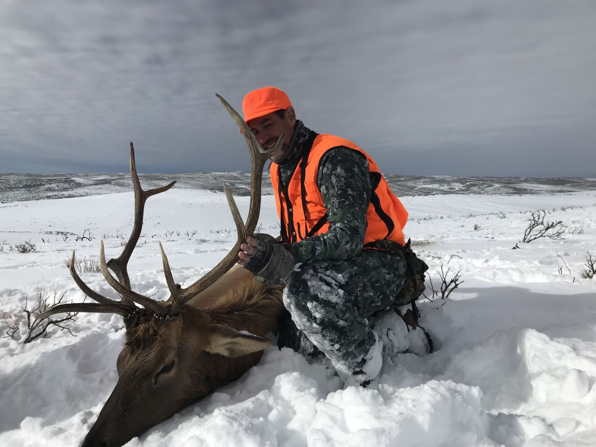 Colorado Elk Hunting Outfitter Testimonials